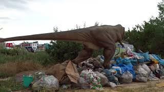 приколы нашего городка - Анапа Динозавр питается на мусорке