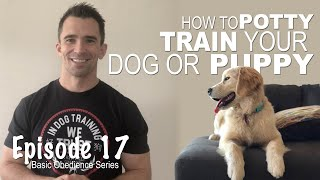 Everything you Need to Know to EASILY Potty Train Your Dog or Puppy! Episode 17