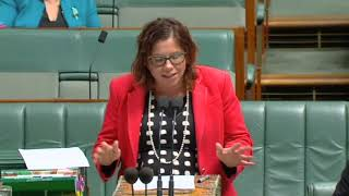 Parliament - 4 July 2019 - Preschool funding