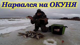 Первый лёд 2018 - 2019 гг. Ловля крупного окуня на мормышку!!!