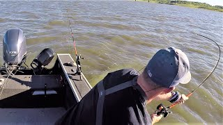 These Fish HAMMER Your Baits! (Rod gets slammed)
