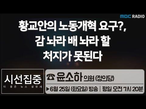 [시선집중] 황교안의 노동개혁요구?, 감 놔라 배 놔라 할 처지가 못된다 - 윤소하 의원 (정의당)