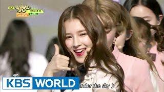 MOMOLAND with DIA - Wonderful Love   모모랜드 with 다이아 - 어마어마해 [Music Bank / 2017.05.19]