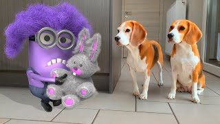Oh No Minions Become Real !!! Cool Minion Animations Compilation .