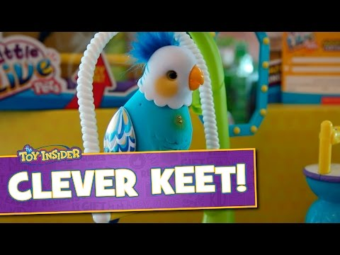 Little Live Pets Clever Keet from Moose Toys at Sweet Suite 2015!