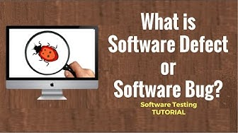 What is Software Defect or Software Bug? Software Testing Tutorial 22