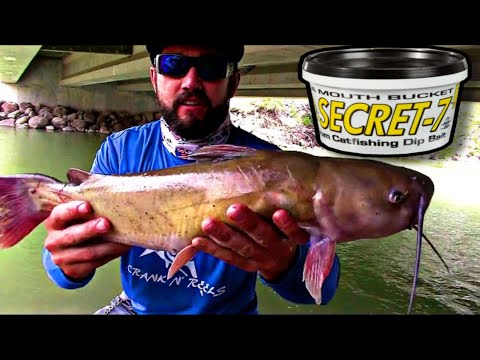 Secret 7 Catfish Bait Does It Really Work??