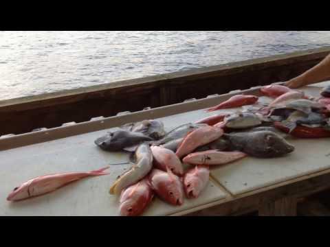 Sea Legs III Deep Sea Fishing - FULL VIDEO TOUR (Hollywood, Florida)