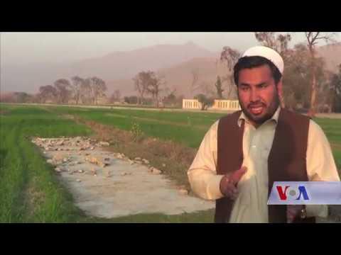 Cricket tournament in Nangarhar Province - VOA Ashna