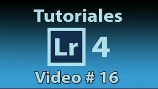 Tutorial Lightroom 4.1(Español) # 16 Palabras clave, ¿Como organizar nuestras fotos?. liclonny