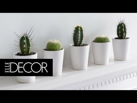 8 Things to Get Rid of in 2016 | ELLE Décor