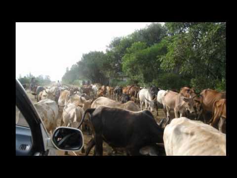 Kincardine to Kenya KISUMU - TRAVEL CITY & COUNTRY