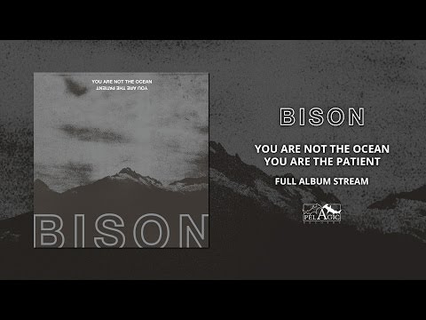 BISON - You Are Not The Ocean You Are The Patient (Full Albu