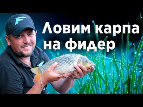 Рыбалка на фидер!