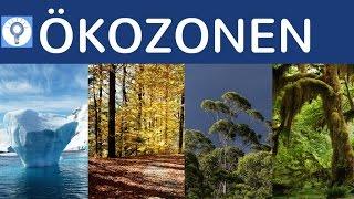 Ökozonen - Klimazonen & Vegetationszonen einfach erklärt - Überblick Geografische Landschaftszonen