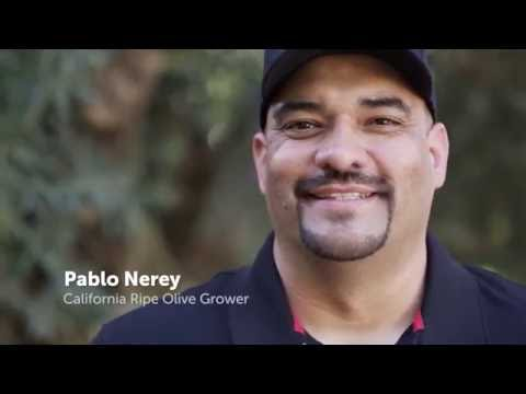 Meet California Ripe Olive Growers: The Nerey Family