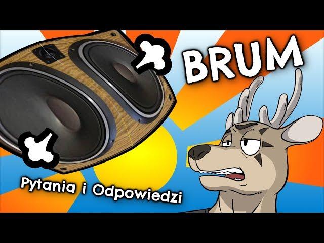 [PIO] BRUM czyli o tym wkurzającym audiofilów dźwięku ... po mojemu