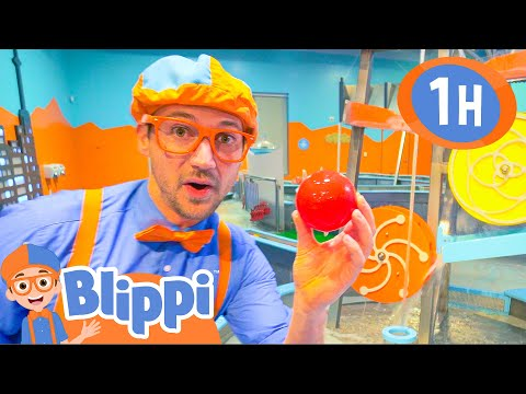 Blippi Videos for Toddlers | Learning at the Children's Museum