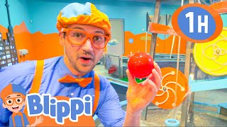 blippi videos for toddlers learning at the childrens museum
