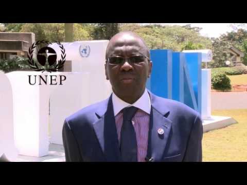 Dr. Willy Mutunga,The Chief Justice of Kenya on Environmental Rule Law