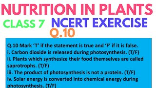 True or False | Nutrition in plants class 7th ncert solution | DARSHAN CLASSES