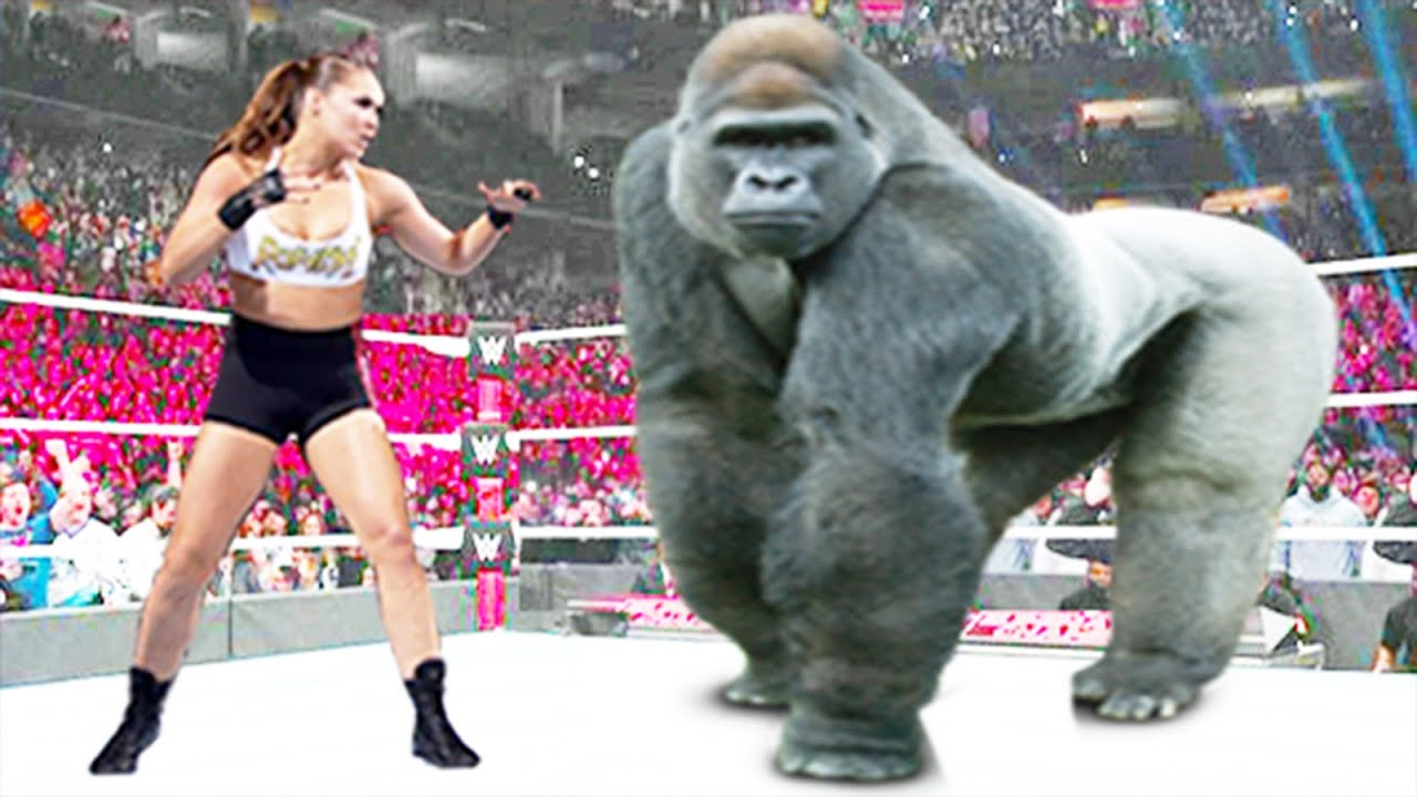 Ronda Rousey vs Gorilla - Iron Man Match