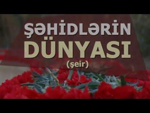 Şəhidlərin Dünyası - şeir