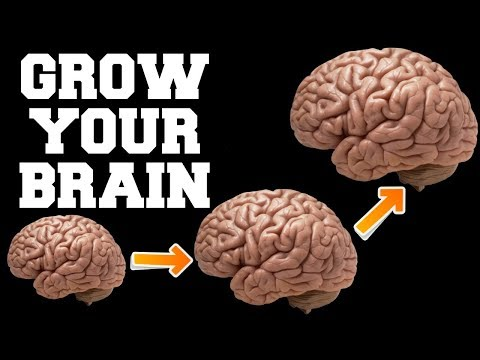 FAST BRAIN GROWTH SOUNDS : ENHANCE YOUR LIFE : QUICK RESULTS !
