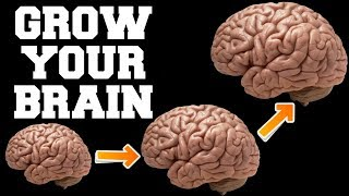 FAST BRAIN GROWTH SOUNDS : CENTURIES OLD SECRET OF INDIAN SAGES : RESULTS IN 1 WEEK !