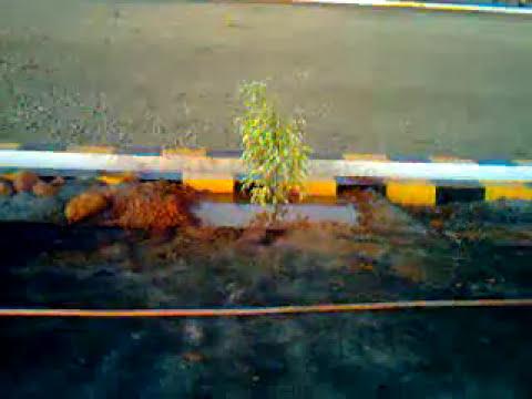 Tirupati TUDA Plots Udipi Mangalore Hubli Dharwar Tumkur Mysore Belgaum realestate properties