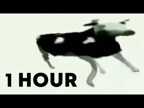 Dancing Polish Cow at 4am 1 hour version