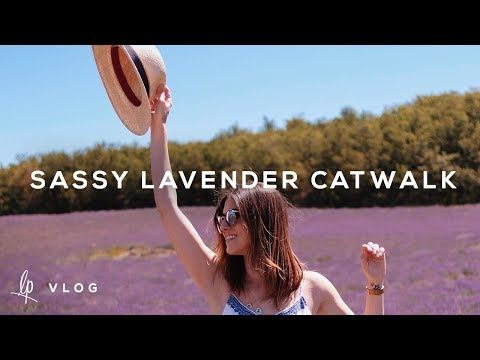GETTING SASSY IN THE LAVENDER FIELDS | Lily Pebbles Vlog