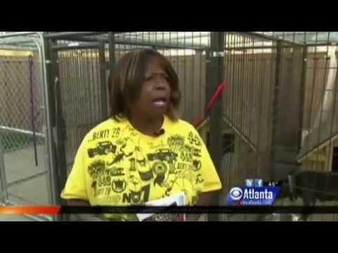 Black ZOMBIE Rapes Dog, Shootings..