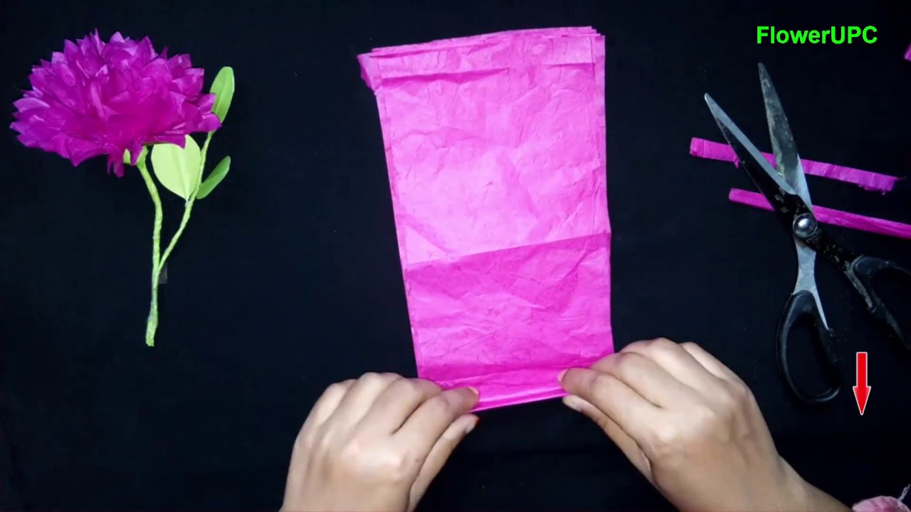 How to make easy color tissue paper flowers diy color tissue how to make easy color tissue paper flowers diy color tissue paper flower flowerupc mightylinksfo