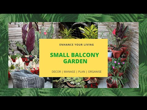 Small Balcony Garden | Home decor using natural plants | indoor plants | Sitting   space in balcony