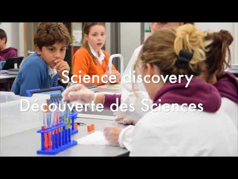 DISCOVERY CLASSES