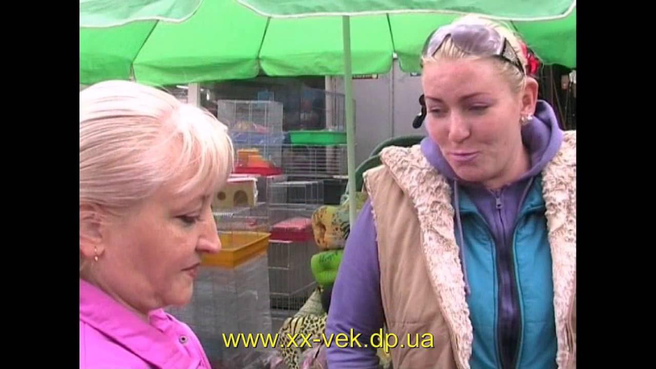Птичий рынок Днепропетровска - фото - YouTube