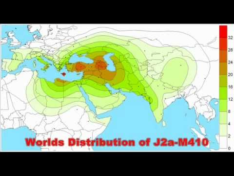 The TRUTH about The Haplogroup J (Y-DNA)