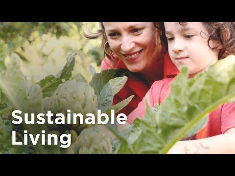 7 Sustainable Living Ideas