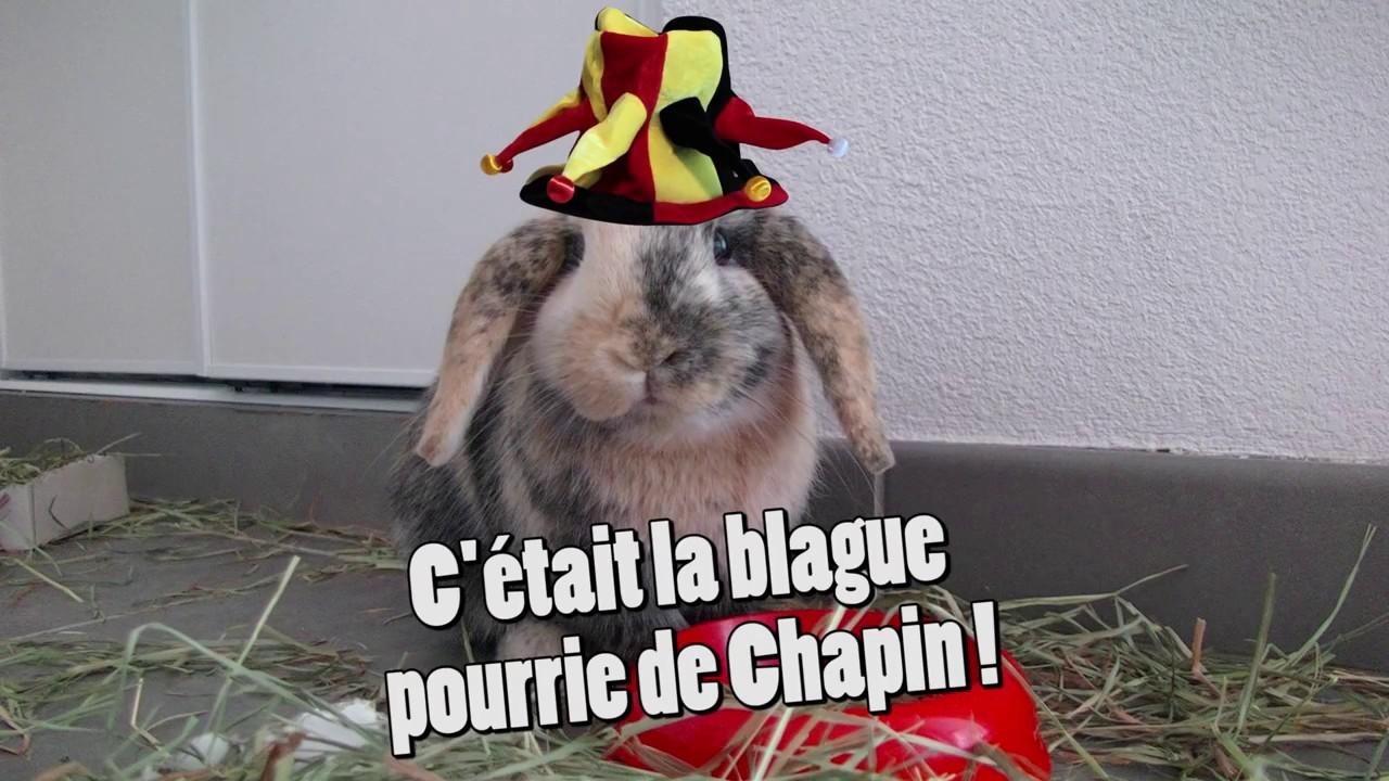 Drôle 2 Lapin : Pâques !