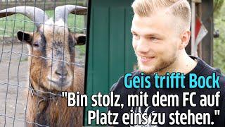 1. FC Köln: Johannes Geis besucht Geißbock Hennes VIII im Kölner Zoo