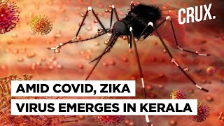 Zika virus case reported in India's Kerala: All You Need To Know