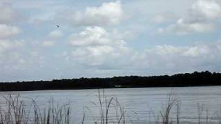 landing m squared amphibious float plane 100 hp hirth marc young flying in largo fl