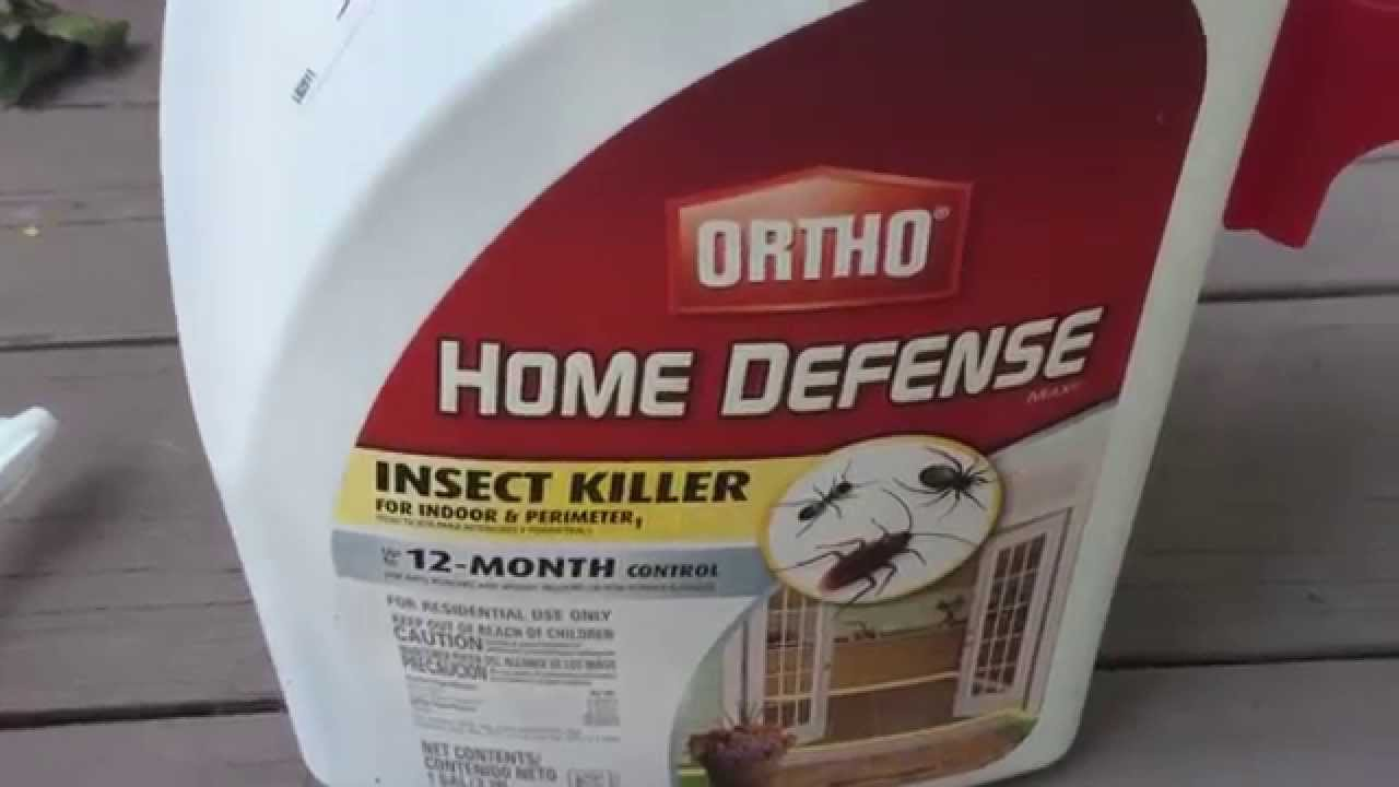 ortho home defense review ☆ does ortho home defense work? - youtube