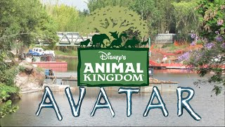 avatar land and rivers of light construction update at disney s animal kingdom
