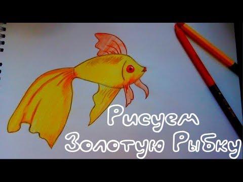Как нарисовать Золотую Рыбку.