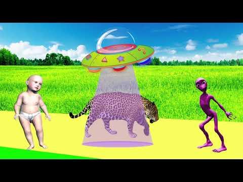 tiere-lernen-für-kinder---tiergeräusche-für-baby---tiervideo-für-kinder-#47