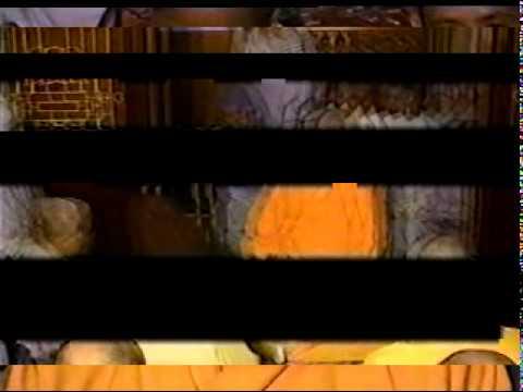 Thiền Viện Trúc Lâm Đà Lạt - Phương pháp tọa thiền - Sư Ông - 1999