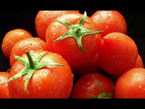 Как дольше сохранить помидоры свежими в домашних условиях