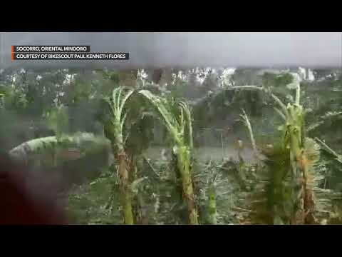 Typhoon Tisoy Unleashes Strong Winds, Heavy Rain In Oriental Mindoro